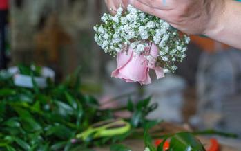 Florists - Photography Studios Loutraki