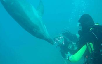 Καταδύσεις Scuba Diving στο Λουτράκι